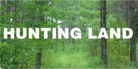 Farm, Timber & Hunting Real Estate in Mid-South - Southern